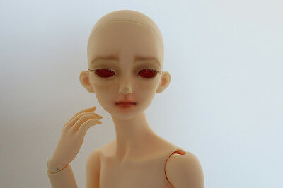 Dreaming Doll Misora MSD BJD with certificate