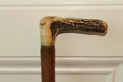 Antique Walking Stick With Carved Antler Handle