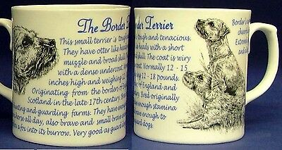 Border Terrier Dog Origins And Facts Fine Bone China Gift Mug