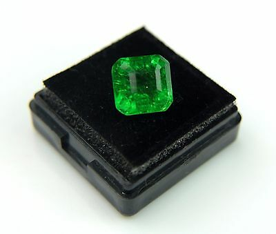 eBay Authentic Green Color 6.00 Ct. Certified Emerald Loose Gemstone