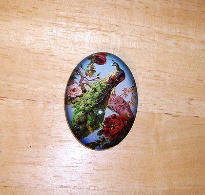 Peacock Floral Glitter Unset Handmade Art Bubble Cameo Cabochon 30X40mm