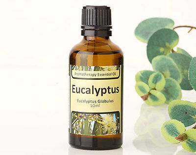 Eucalyptus Aromatherapy Essential Oil - Aids Relaxation -Add To Bath/ Oil Burner