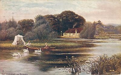 POSTCARD   PANGBOURNE  ON  THAMES      Tuck