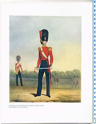 Officer Of The Coldstream Guards (Winter Dress) Antique Military Picture Print