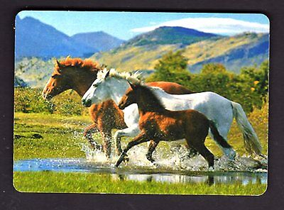 WIDE Swap/Playing Card - Beautiful Horses and Foal