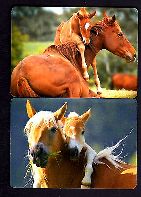 WIDE Swap/Playing Cards - Gorgeous Mares & Their Foals x 2