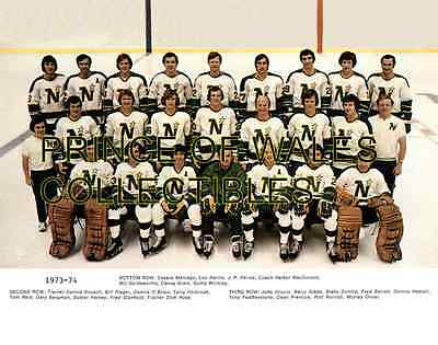 1974 Minnesota North Stars Team Photo 8X10