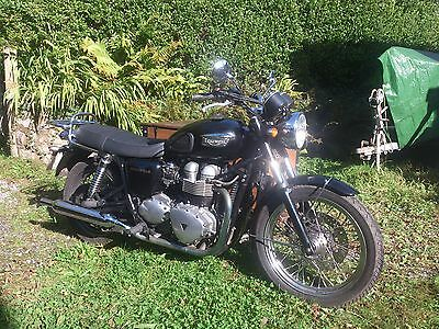 Triumph Bonneville T100 With Sidecar / Storage Combination - Immaculate - 2003