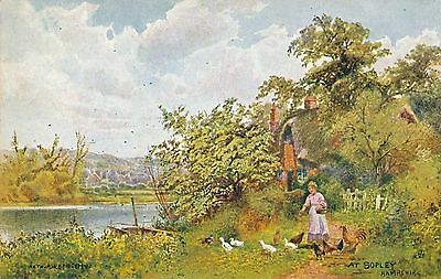 POSTCARD   HAMPSHIRE   SOPLEY      Tuck