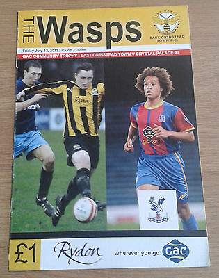 East Grinstead Town v Crystal Palace X1 12/7/2013 Friendly