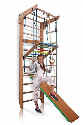 Sport Wall Bars Swedish Ladder Gymnastic Climbing Home Kids Playground Gym