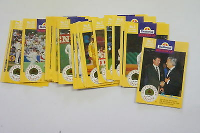 1993/94 Buttercup Cricket Allan Border Tribute set of 24 cards