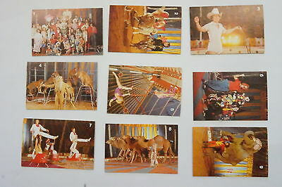 Gold Crest Ashton's Circus cards 17/18 cards issued 1984