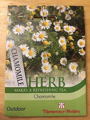 Chamomile Herb - Vegetable Seeds, RRP £2.29 NEW Thompson and Morgan