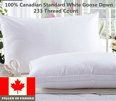 100% Cotton Canadian White Goose Down  Pillow 1 PC Filled in Canada