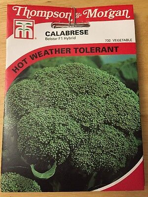 Calabrese Belstar F1 - Vegetable Seeds, RRP £2.99 NEW Thompson and Morgan