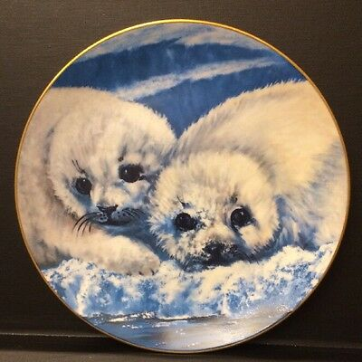 """Canadian Harp Seals"" SNOW BABIES  1981 8 1/2"" Collector Plate Hackett American"
