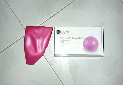 Mini palla ginnica Fitball yoga ginnastica fitness iGym Mini Gym Ball 25 cm