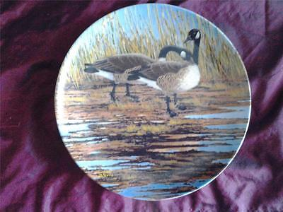 Canadian Geese Plate Courtship Donald Pentz Wings Upon The Wind Dominion China
