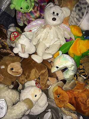 L@@K HUGE JOBLOT of TY BEANIE BABY BEARS SOFT PLUSH CUDDLY TOYS ( OVER 65+)