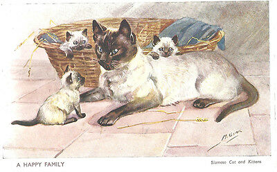 Siamese Cat w/ Kittens Mable Gear 1940's Art Postcard