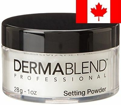 Dermablend Loose Setting Powder Original