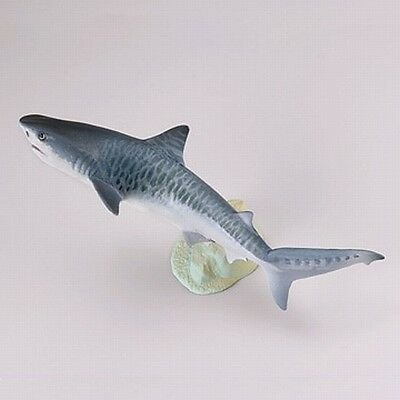 Kaiyodo Capsule Q Museum Miniature Figure Tiger Shark Japan