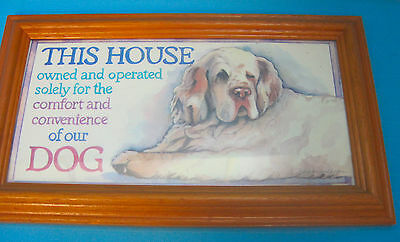 Clumber Spaniel Puppy Dog Art Drawing Framed Sign