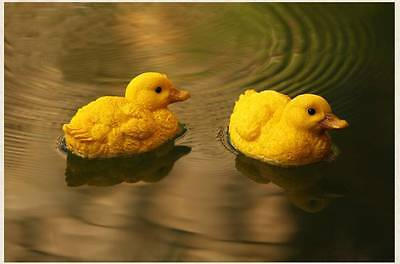 Pair of Small Resin Floating Ducks Outdoor Yard Garden Fountain Pond Decoration