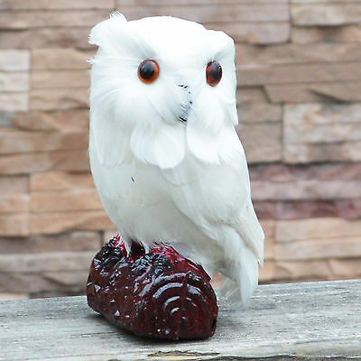 Lifelike Mini Owl Feather White Bird Realistic Taxidermy Home Garden Decoration