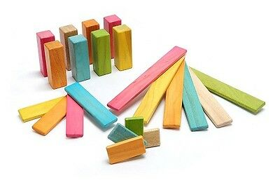 NEW 22 Piece Tegu Endeavor Magnetic Wooden Block Set, Tints FREE SHIPPING