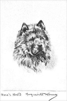 Chow-Chow Dog  Portrait Marguerite Kirmse 1922  8 New Large Note Cards