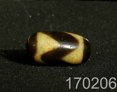 Tiger Teeth Tibet Agate Old Dzi Bead Amulet for Gift 1702063224
