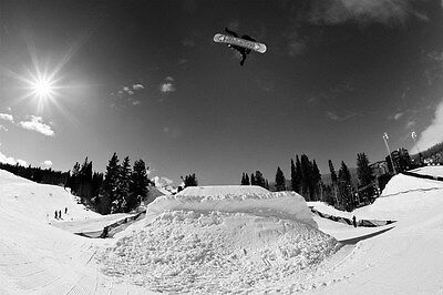 "TY07146 Shaun White - American Snowboarder Olympic Gold Sport 21""x14"" Poster"