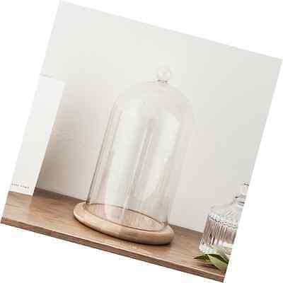 Regular Glass Cloche Bell Jar Dome with Bamboo Tray