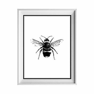 Bumble Bee PRINT / Bees / Hive / Insect / Art / Poster / Gift