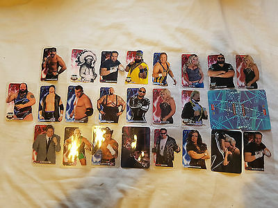 Collection of 25 WWE Lamincards