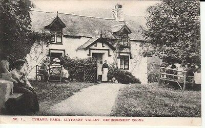 1907 TYMAWR FARM Llyfnant Valley, Refreshment Rooms, people sitting,lady at door