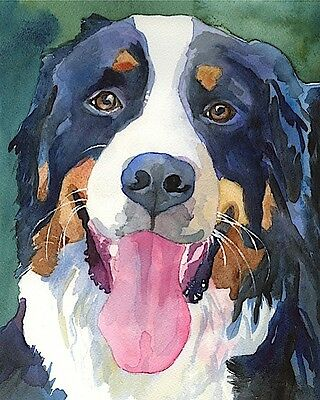 Bernese Mountain Dog Art Print Signed by Artist Ron Krajewski 8x10