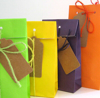 7 x Small Colour Gift Bags + Tags+ Hemp String Birthday Party *90gms Kraft Paper