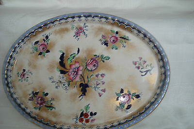 Losol Ware Keeling Co Floral Oval Plate Tray Victorian Art Nouveau Antique