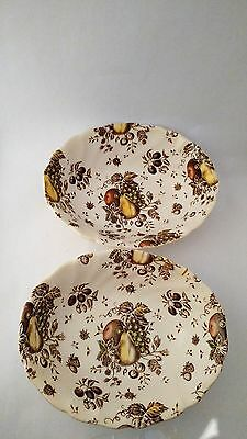 """Johnson Brothers ENGLAND Autumn's Delight Pair of 8 7/8"""" Oval Vegetable Bowls"""