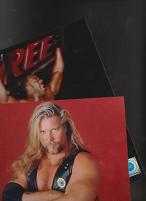 LOT of 50~ 8 X 10 WRESTLING PHOTOS~ ALL OFFICAL~WCW~ WWE~ FILE PHOTOS R/R PLUS