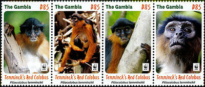 Wwf 2016  Gambia  Red Colobus   Set    Mnh  New