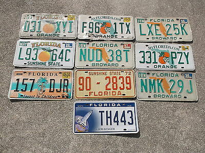10 Florida License Plate lot collecting, decorating or craft # 1