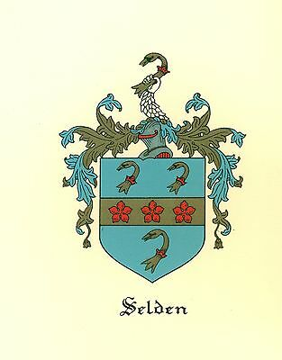 *Great Coat of Arms Selden Family Crest genealogy, would look great framed!