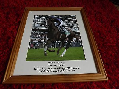 Giant's Causeway 'The Iron Horse' 2000 Juddmonte 36cm x 30cm Photo Framed