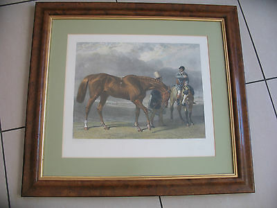 """Stunning framed and mounted Race Horse print  approx. 25"""" x 22.5"""""""