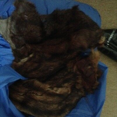 brown fur -parts of a coat -selling as scraps for costume making or reenactment?