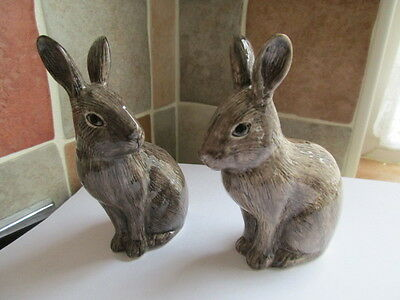 Lovely Wild Rabbits  Ceramic Pepper And Salt Pots By Quail Pottery New & Boxed
